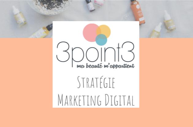 Stratégie de Marketing Digital réalisée par l'agence web Little Beez